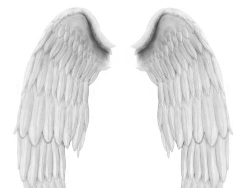天使の翼の PSD ファイル