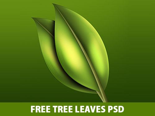 無料木の葉 PSD