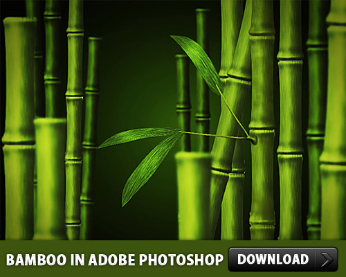 Adobe Photoshop で作った竹 PSD