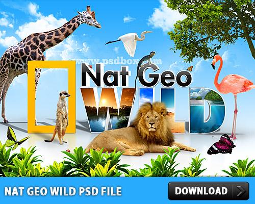 ナットジオ ワイルドの無料の PSD ファイル